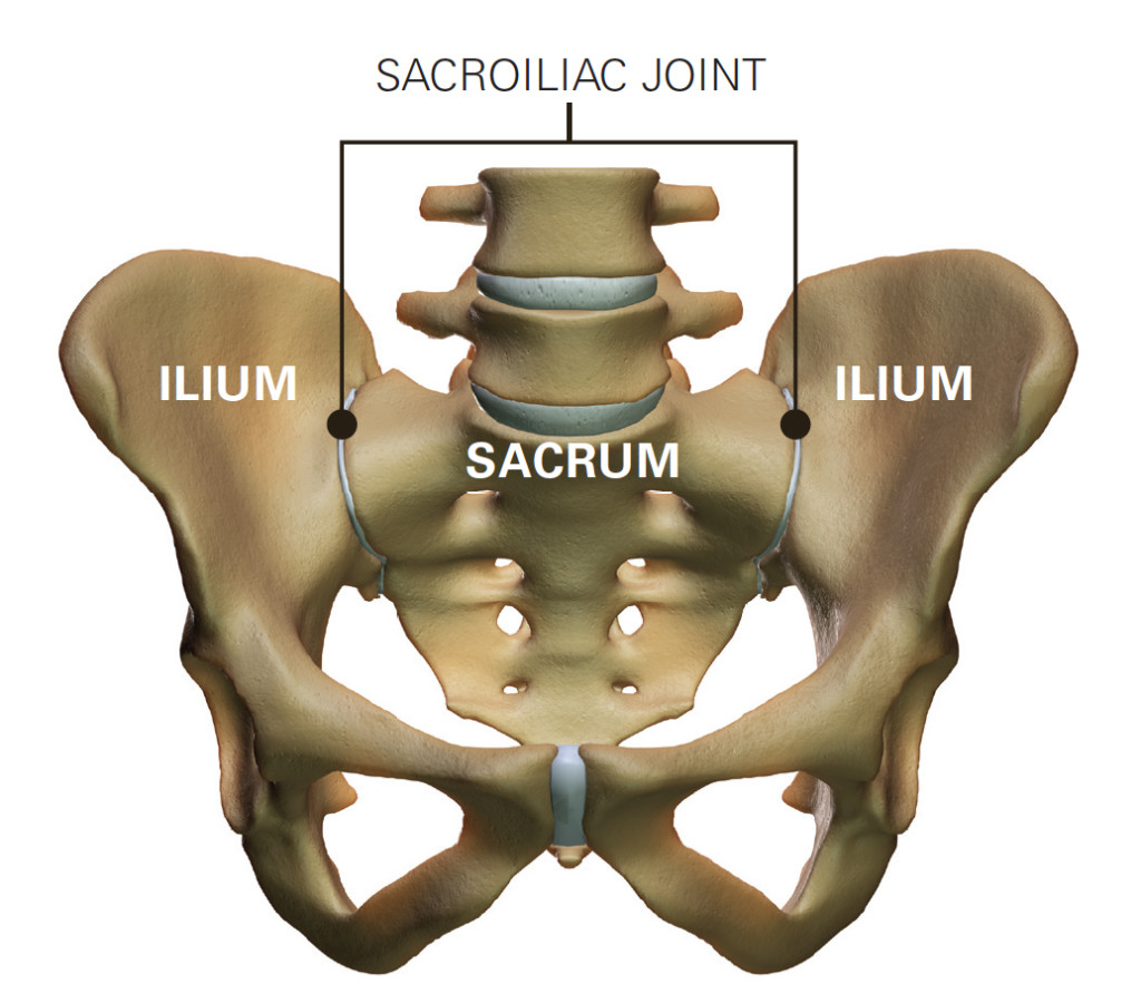 does-the-sacroiliac-belt-really-work